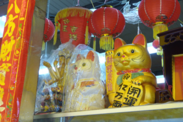 China lucky gold cat